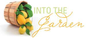 into-the-garden-new